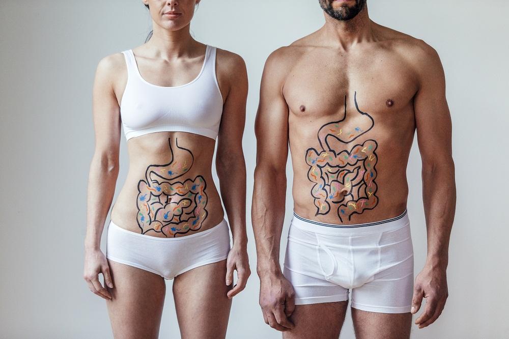 metabolizm człowieka